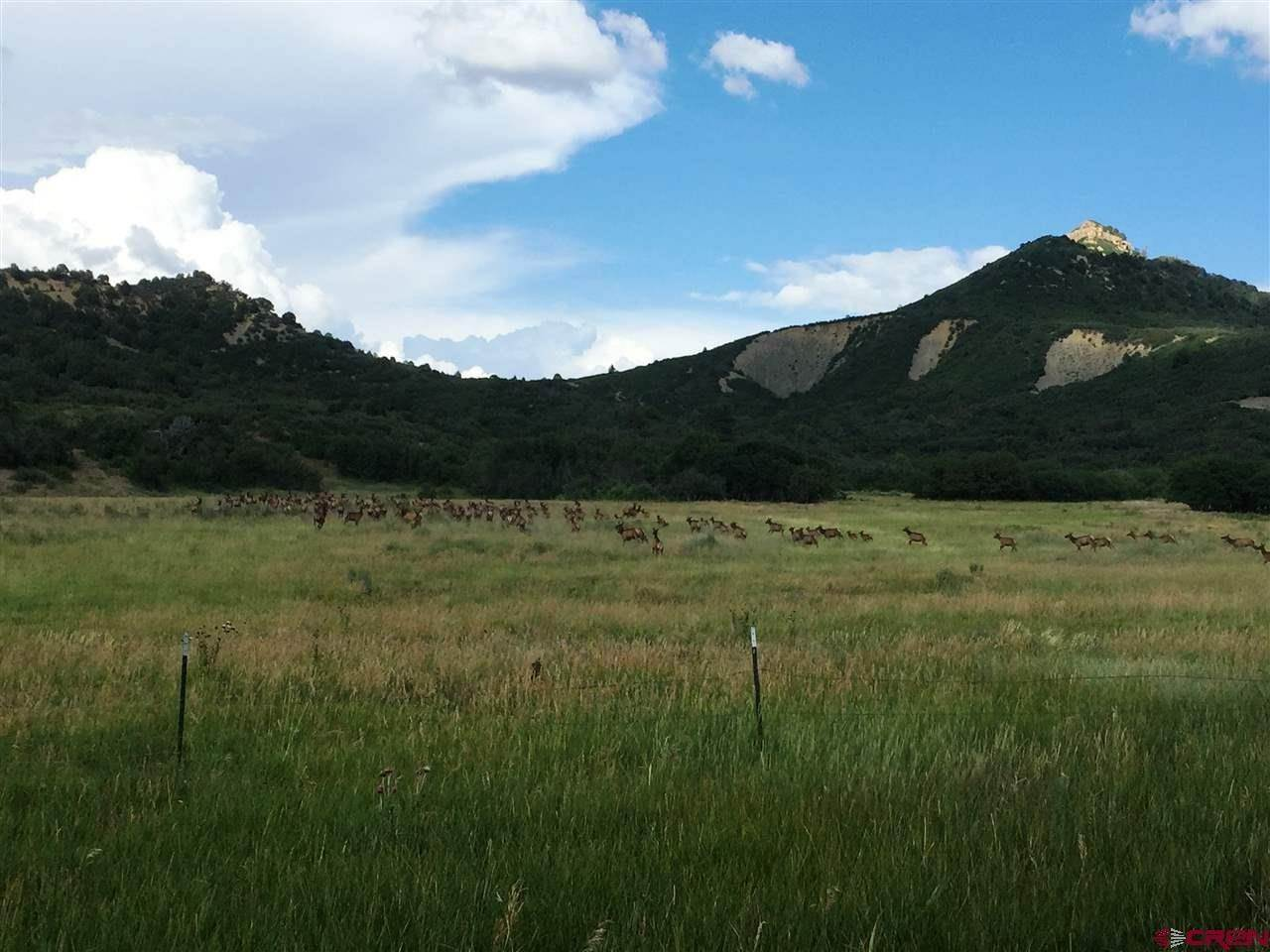 Agricultural Land for Sale at 600 County Road 139 Hesperus, Colorado 81326 United States