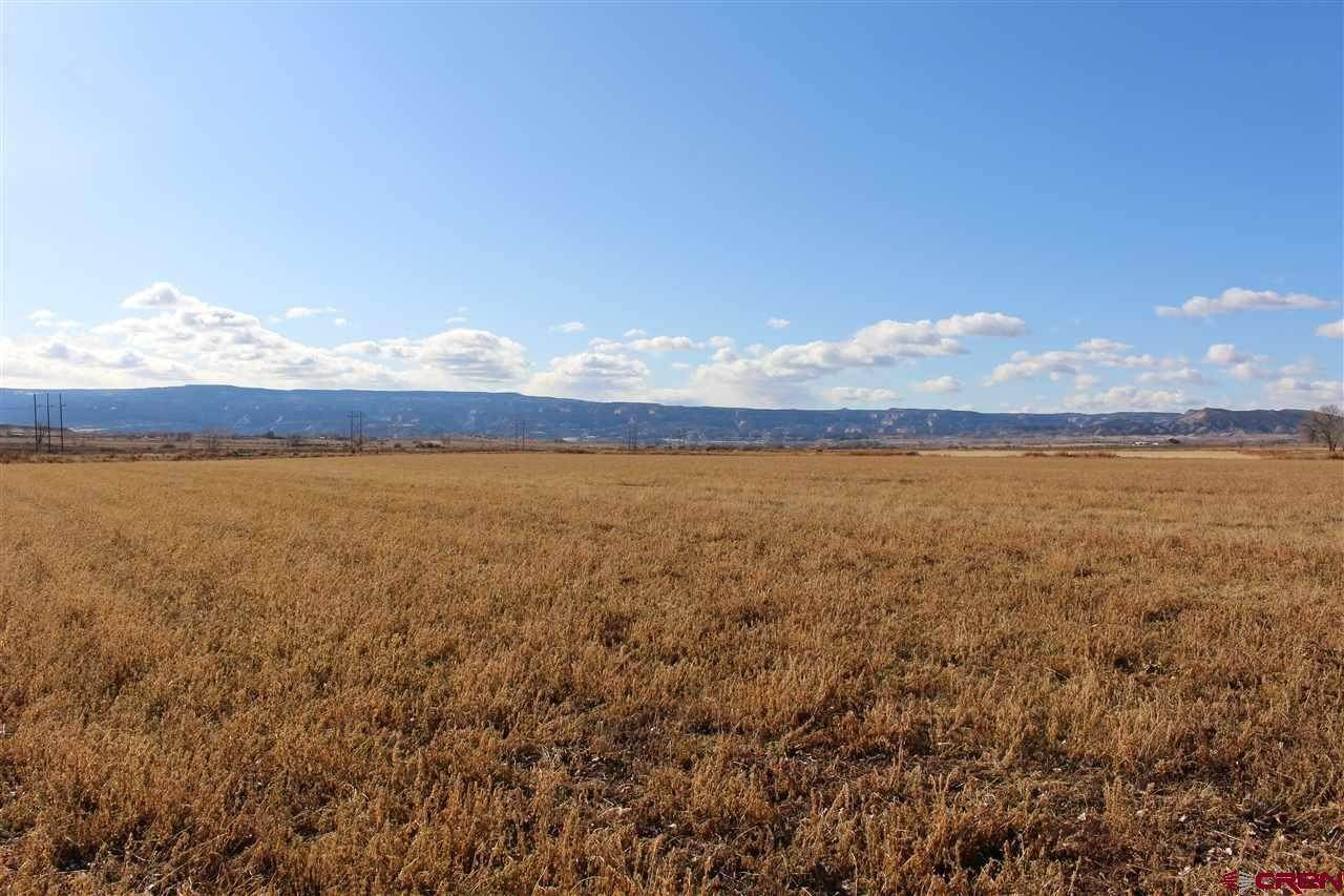 Agricultural Land for Sale at TBD O Road Loma, Colorado 81524 United States