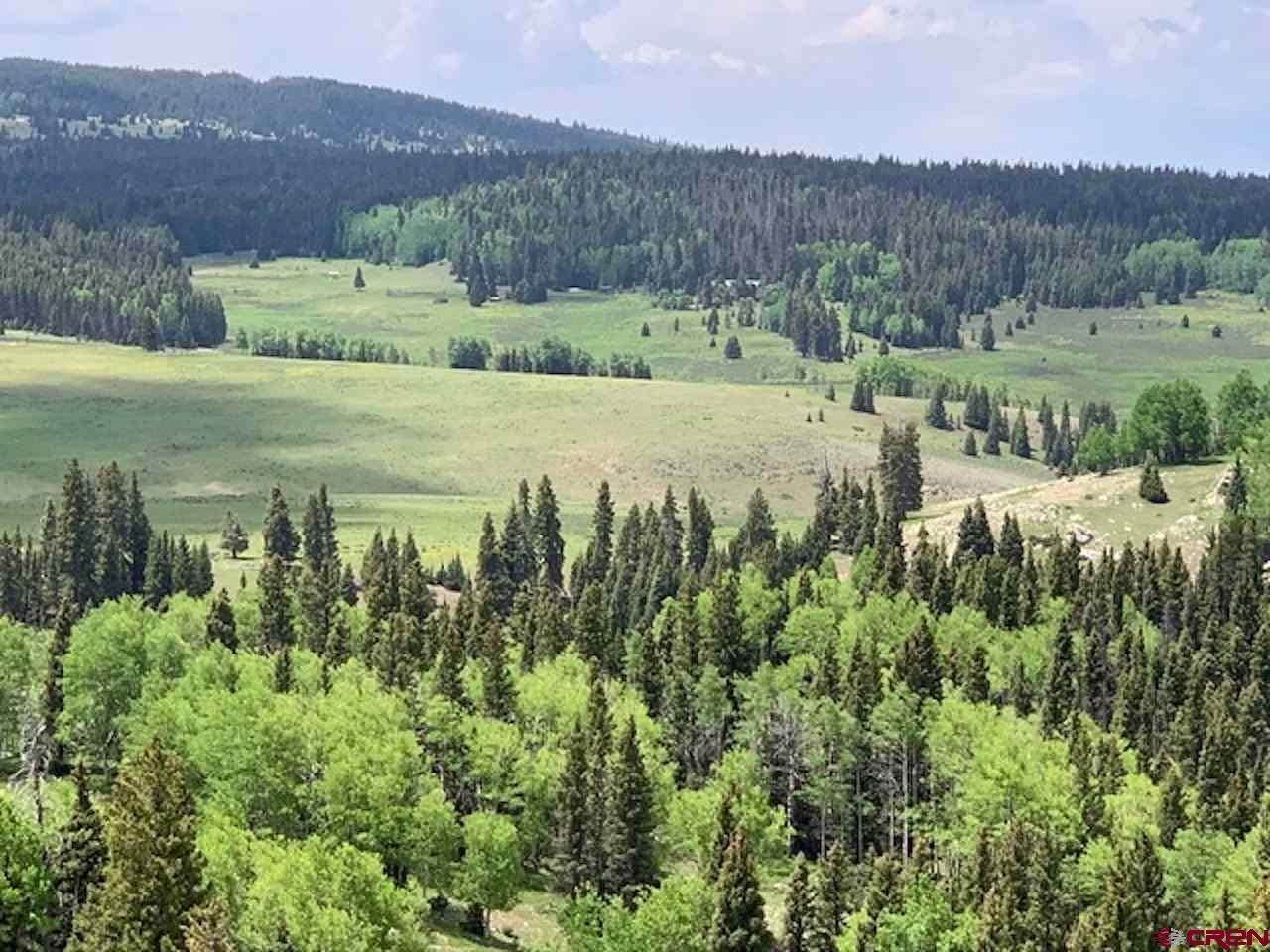 Farm and Ranch Properties for Sale at TBA State Forest Road 93 Tres Piedras, New Mexico 87577 United States