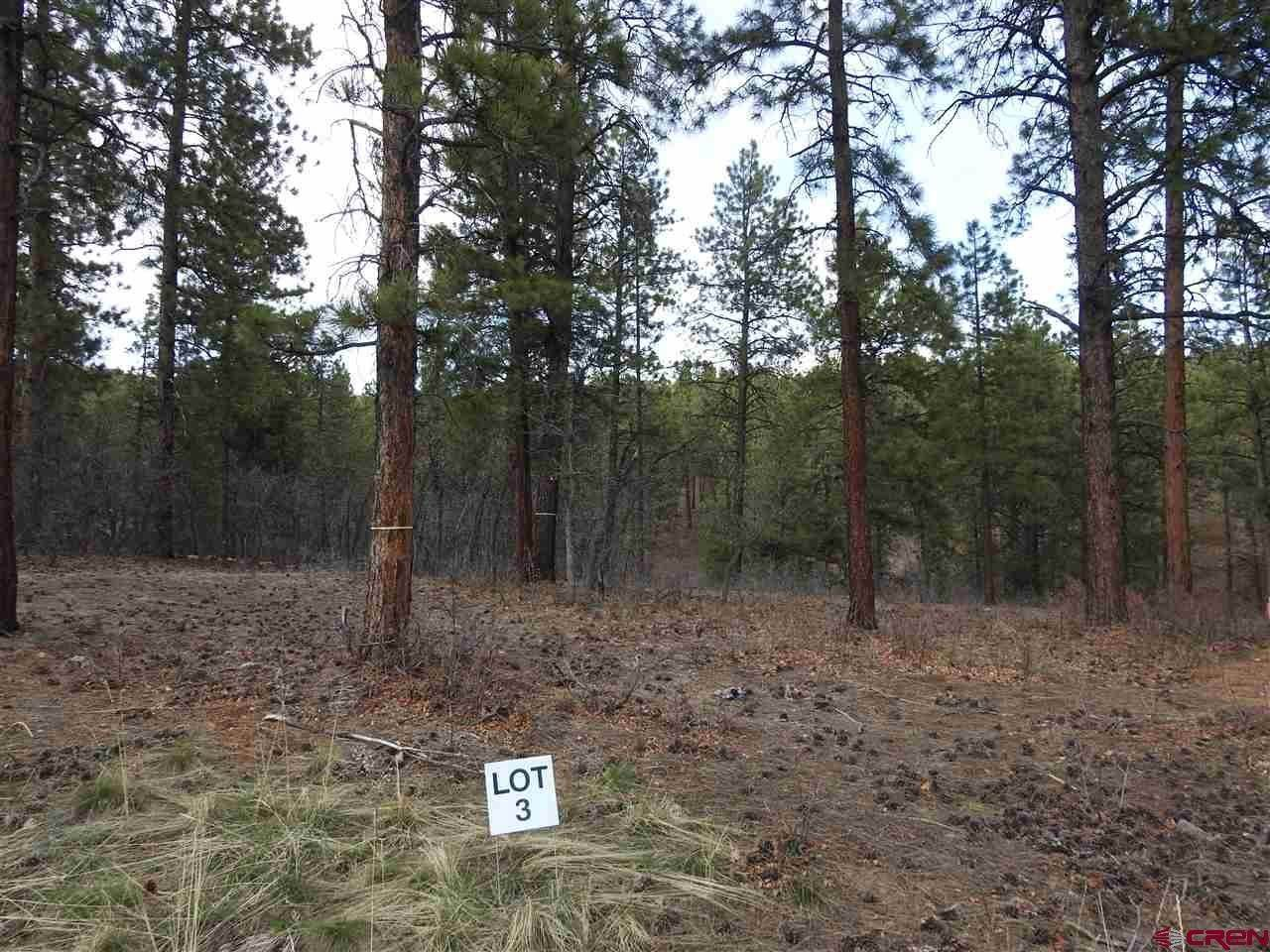 Residential at 47 Canyon Pines (Lot 3) Place Durango, Colorado 81301 United States