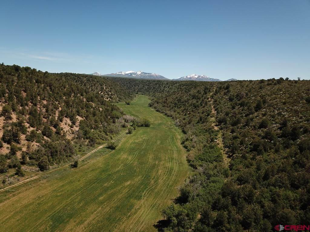 Farm and Ranch Properties for Sale at tbd CR 117 Hesperus, Colorado 81326 United States