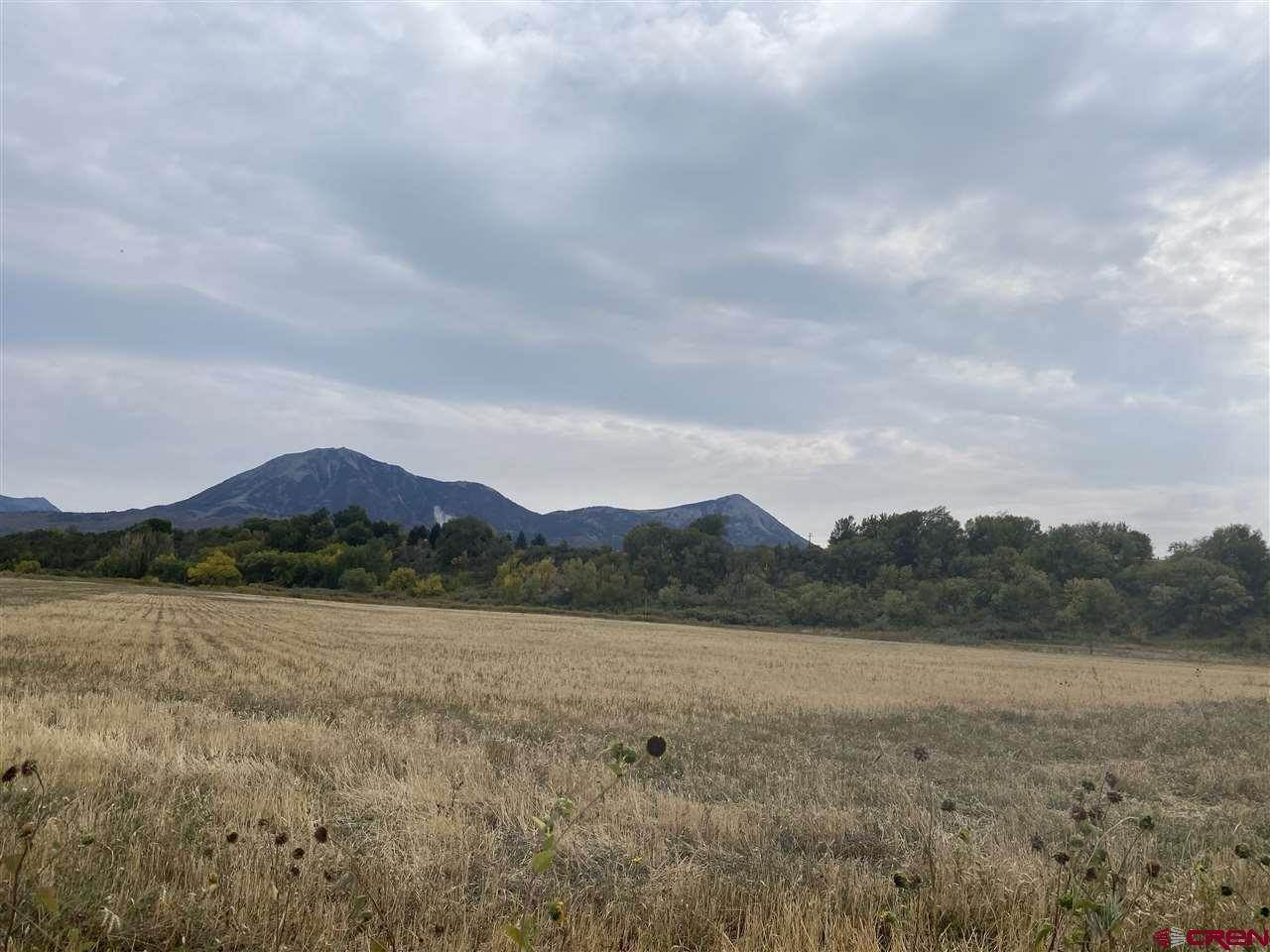Agricultural Land for Sale at TBD Crawford Road Paonia, Colorado 81428 United States
