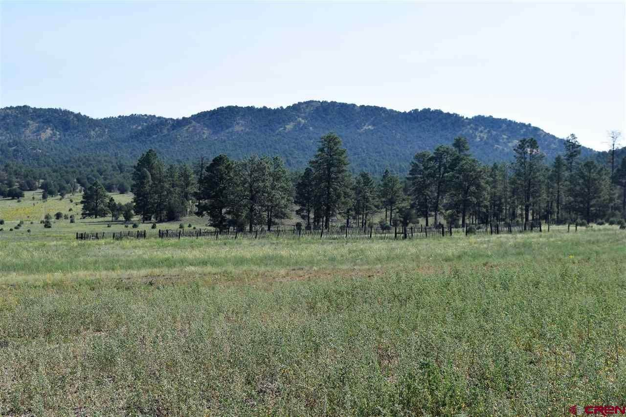 Single Family Homes for Sale at Lot 5 Elk Mountain Meadows Estates Mimbres, New Mexico 88049 United States