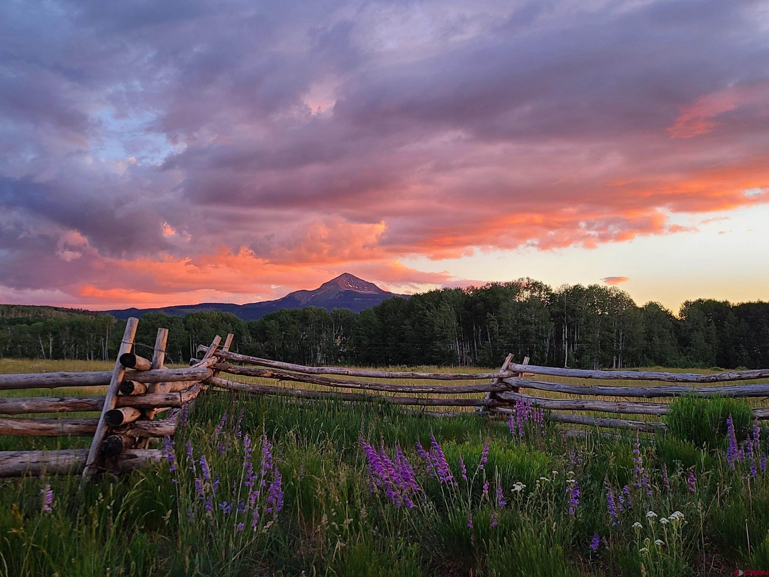 Single Family Homes for Sale at 8325 COUNTY ROAD M44 Placerville, Colorado 81430 United States