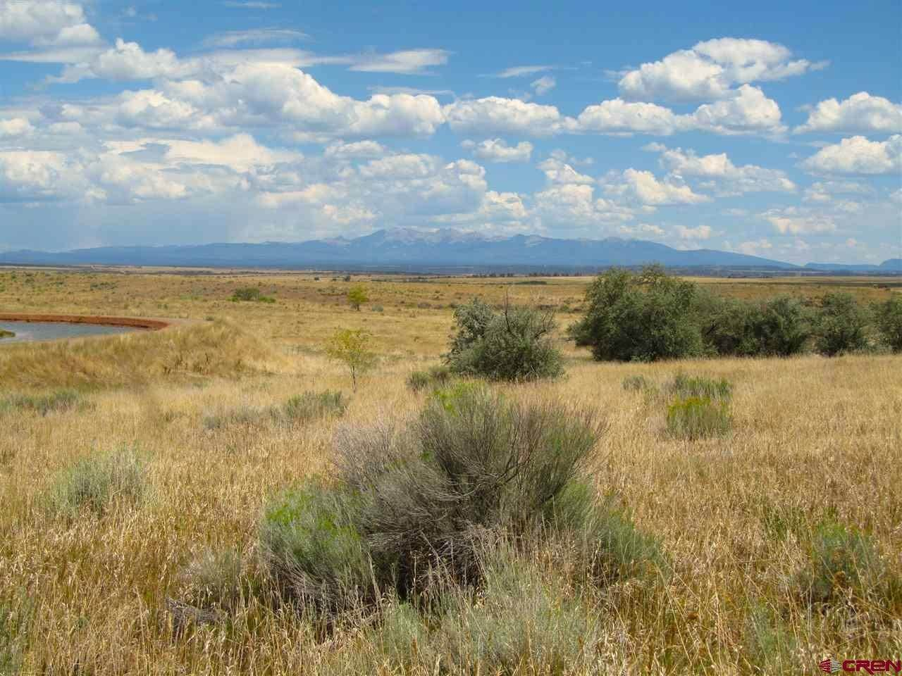 Agricultural Land for Sale at TBD Hwy 491 Yellow Jacket, Colorado 81335 United States