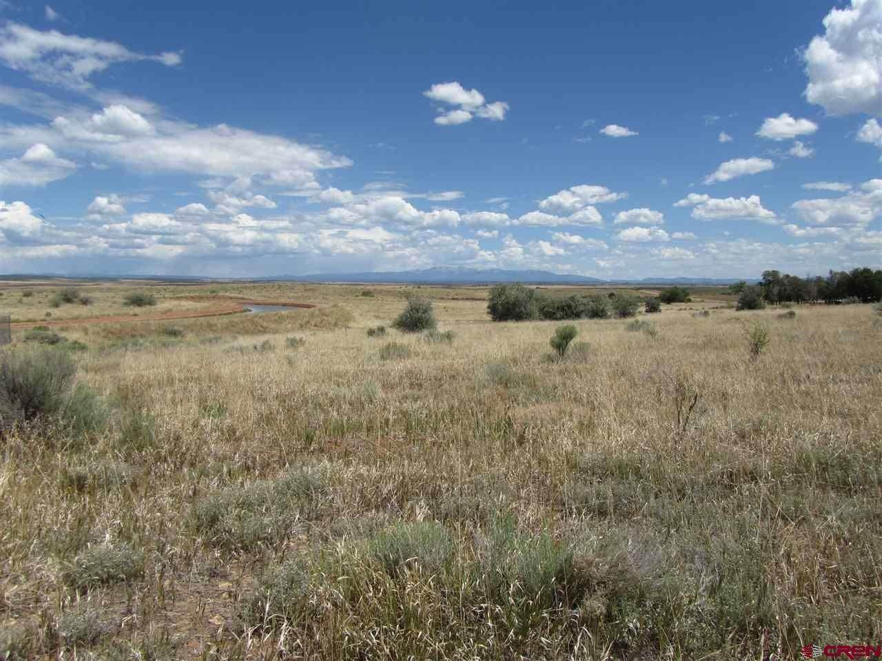 2. Agricultural Land for Sale at TBD Hwy 491 Yellow Jacket, Colorado 81335 United States