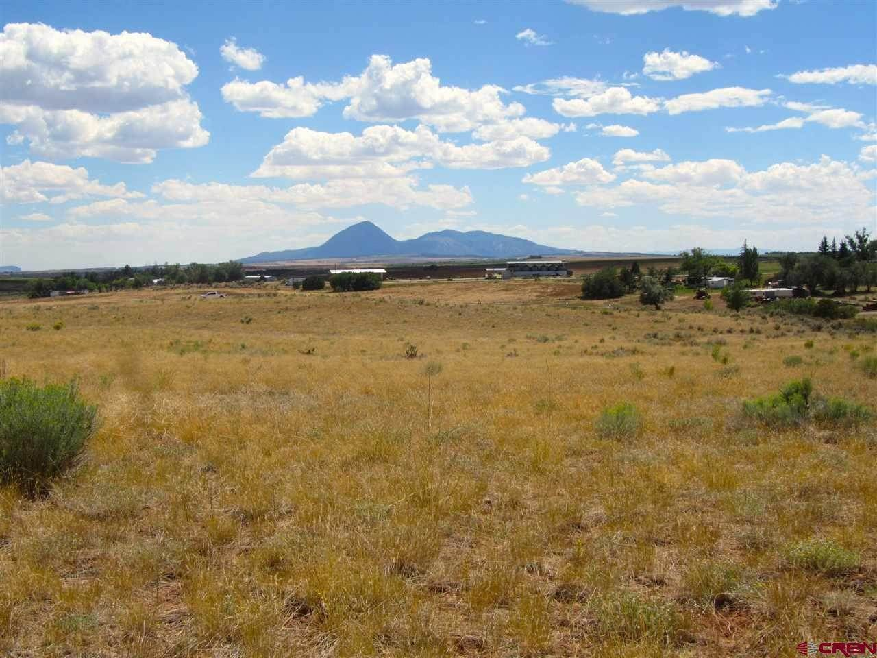 12. Agricultural Land for Sale at TBD Hwy 491 Yellow Jacket, Colorado 81335 United States