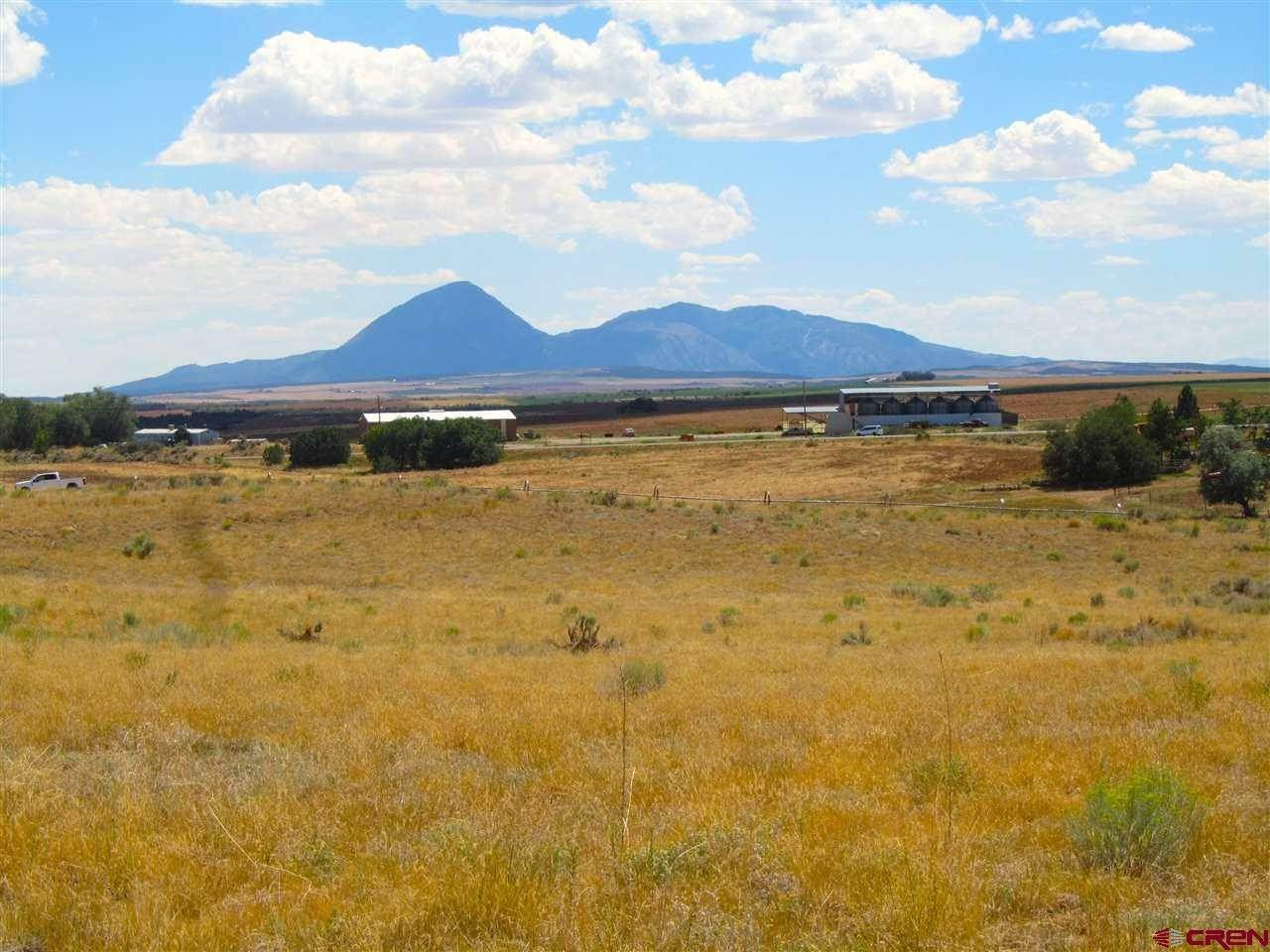 13. Agricultural Land for Sale at TBD Hwy 491 Yellow Jacket, Colorado 81335 United States