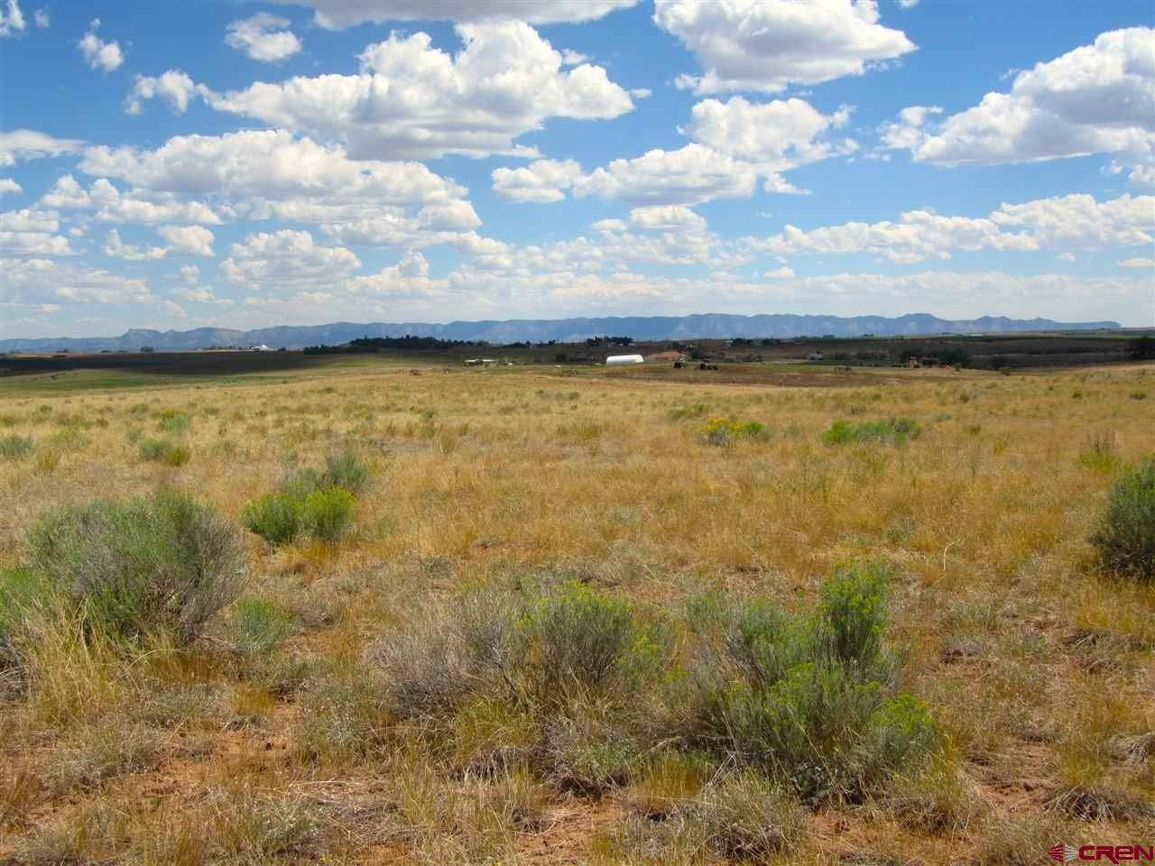 14. Agricultural Land for Sale at TBD Hwy 491 Yellow Jacket, Colorado 81335 United States
