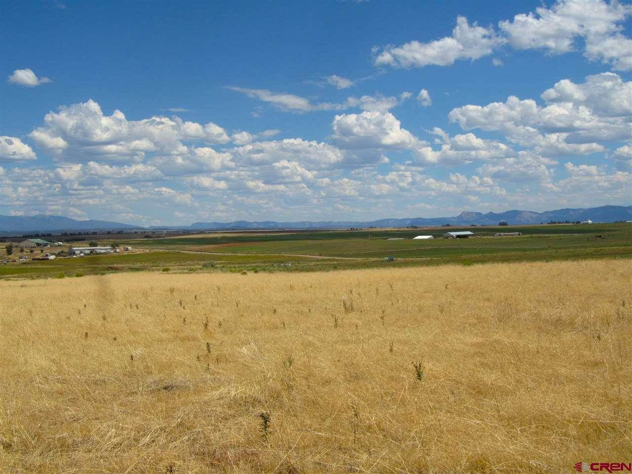 5. Agricultural Land for Sale at TBD Hwy 491 Yellow Jacket, Colorado 81335 United States