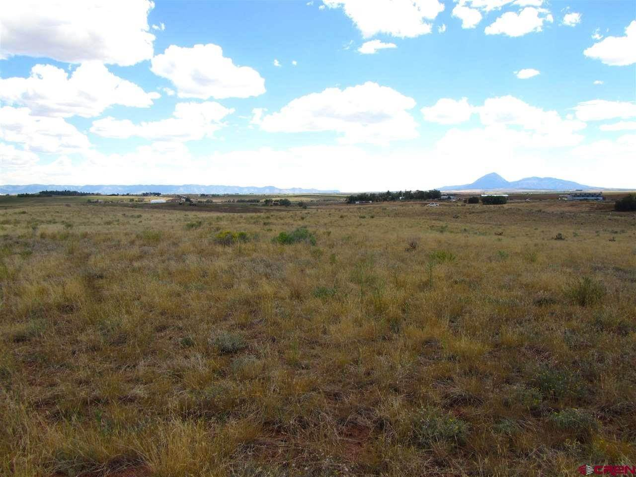 8. Agricultural Land for Sale at TBD Hwy 491 Yellow Jacket, Colorado 81335 United States