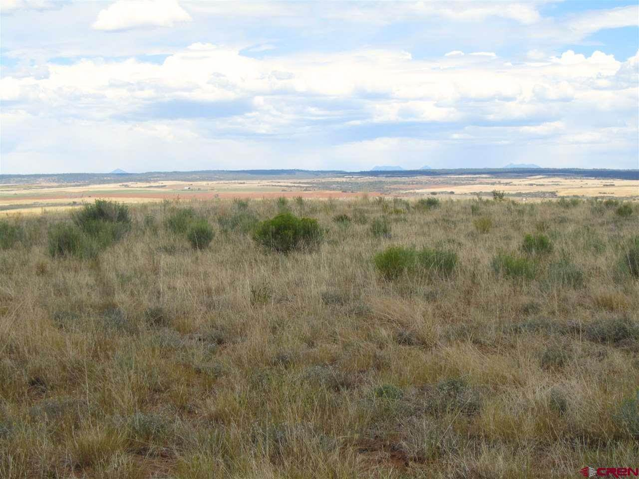 9. Agricultural Land for Sale at TBD Hwy 491 Yellow Jacket, Colorado 81335 United States