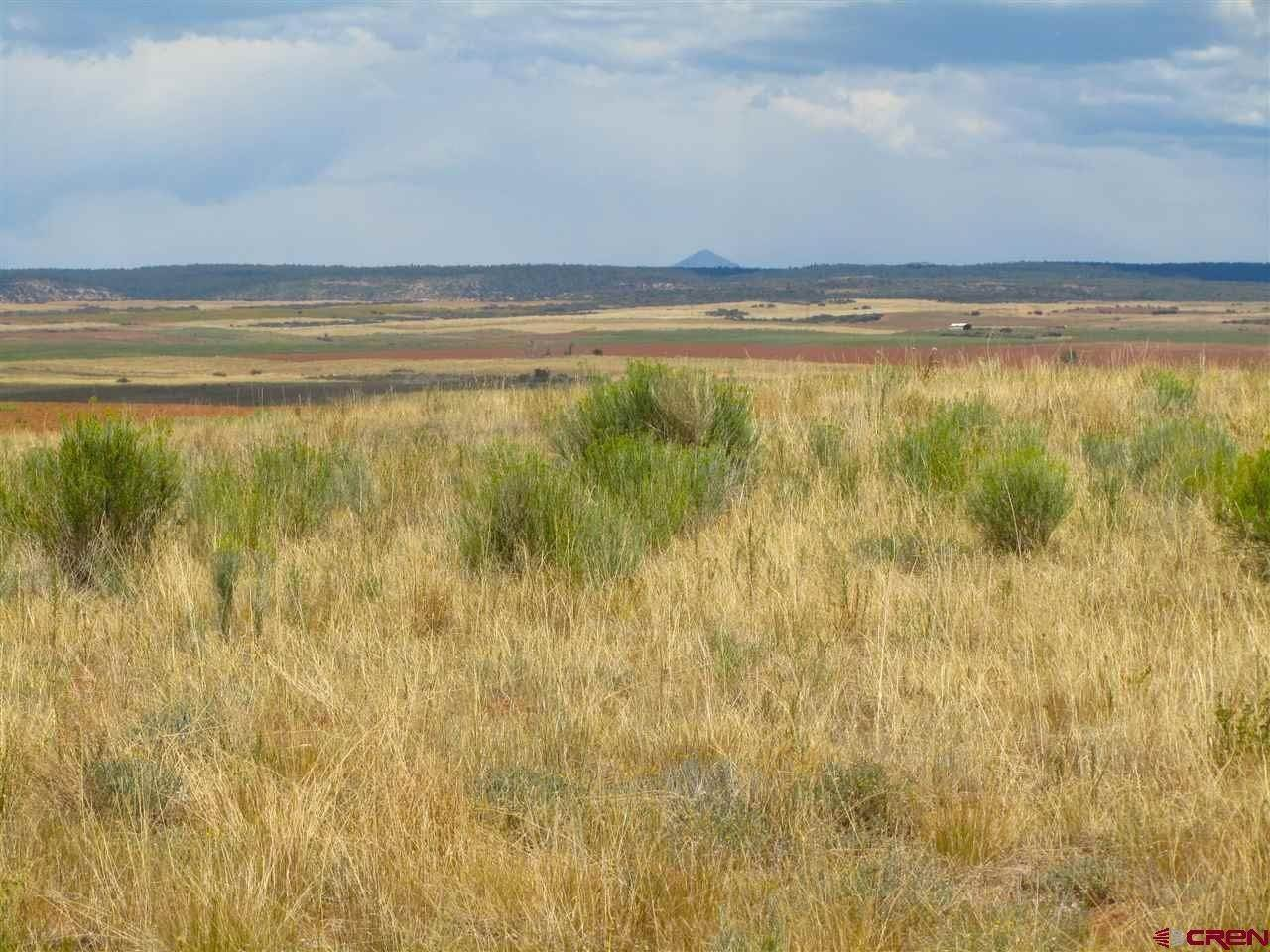 10. Agricultural Land for Sale at TBD Hwy 491 Yellow Jacket, Colorado 81335 United States