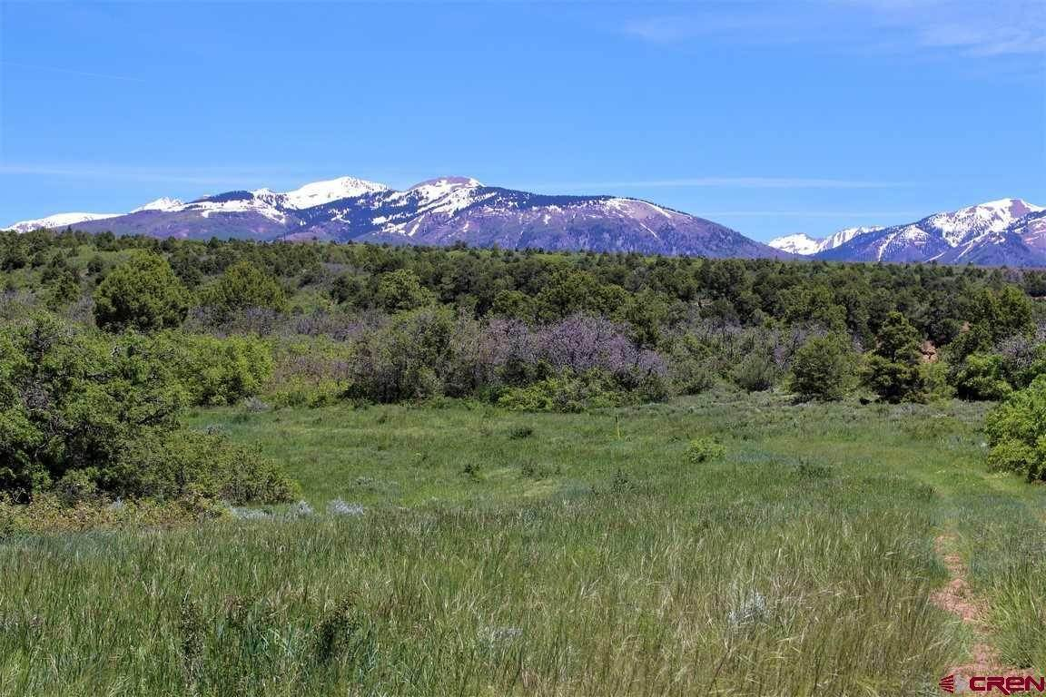 Farm and Ranch Properties for Sale at tbd County Road 117 Hesperus, Colorado 81326 United States