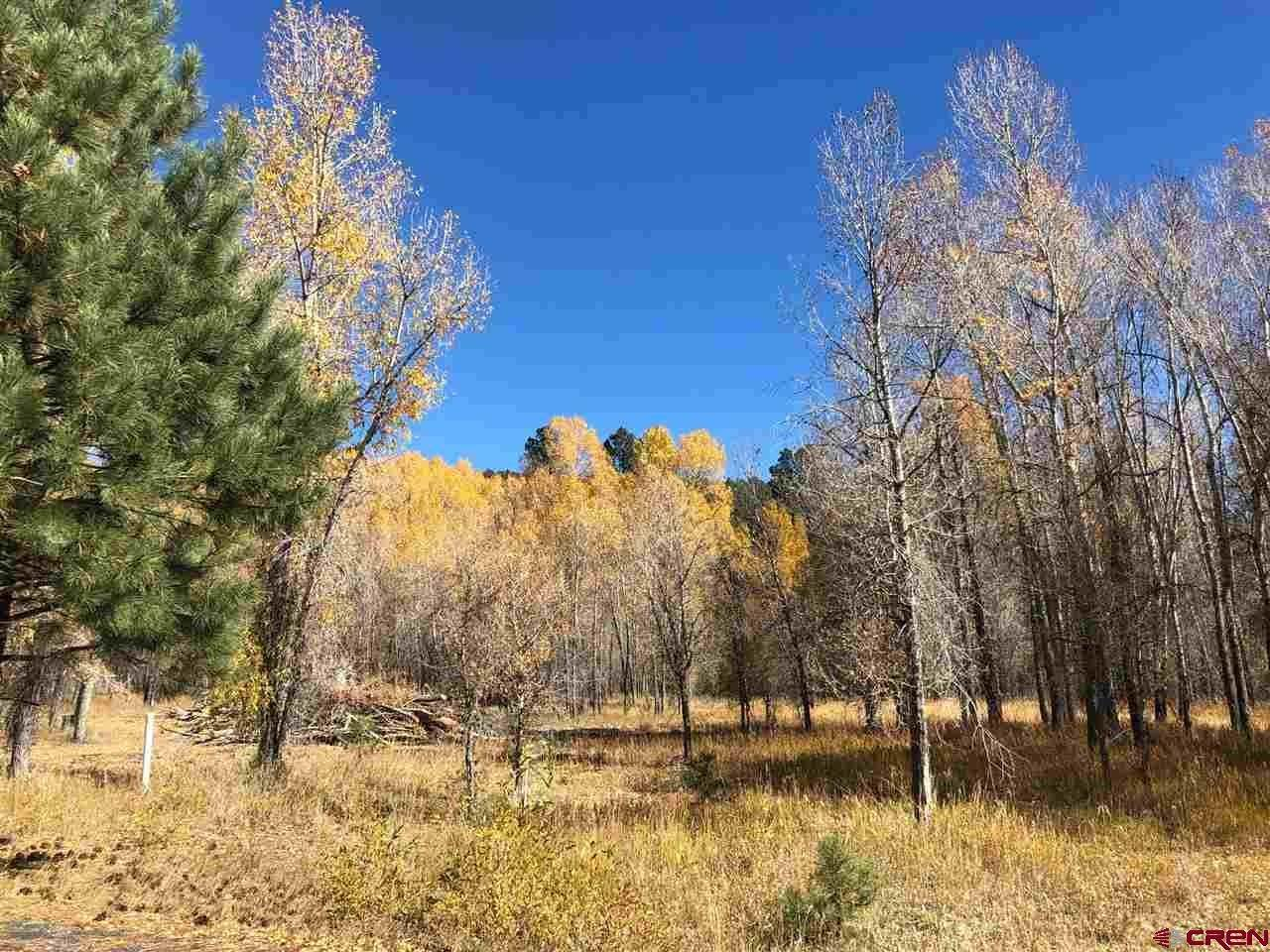 Single Family Homes for Sale at TBD Pine Stone Drive Bayfield, Colorado 81122 United States