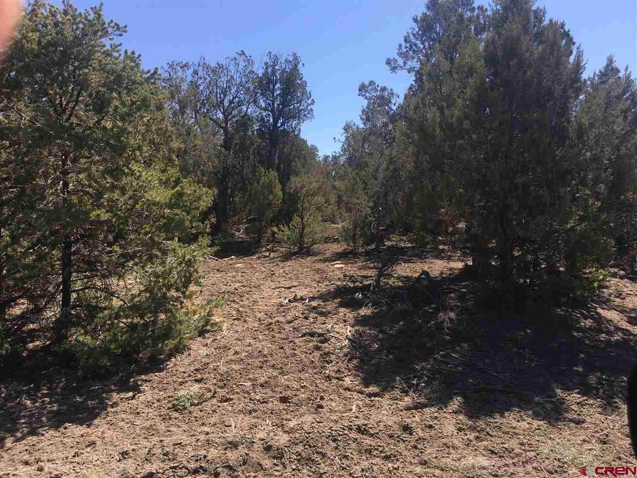 Agricultural Land for Sale at X County Rd 973 Arboles, Colorado 81121 United States