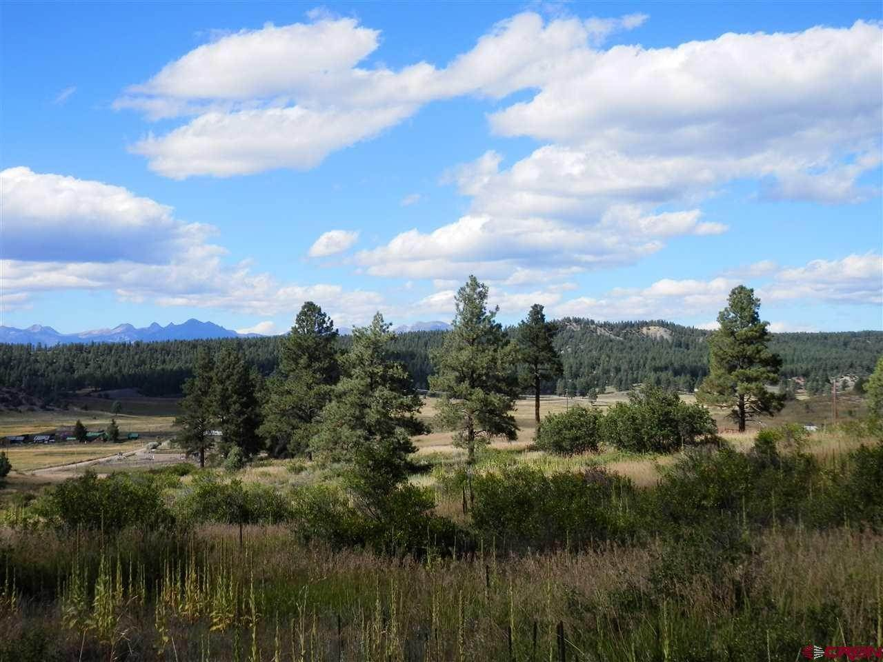 Single Family Homes for Sale at X Lupine Place Pagosa Springs, Colorado 81147 United States