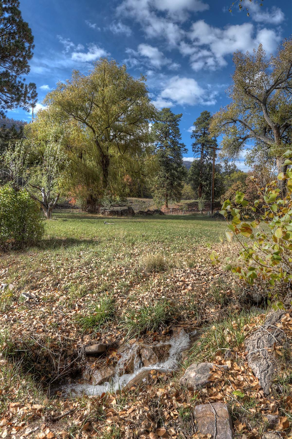 9. Land for Sale at Painter Ranch Lot 1 13950 CR 250 Durango, Colorado 81301 United States