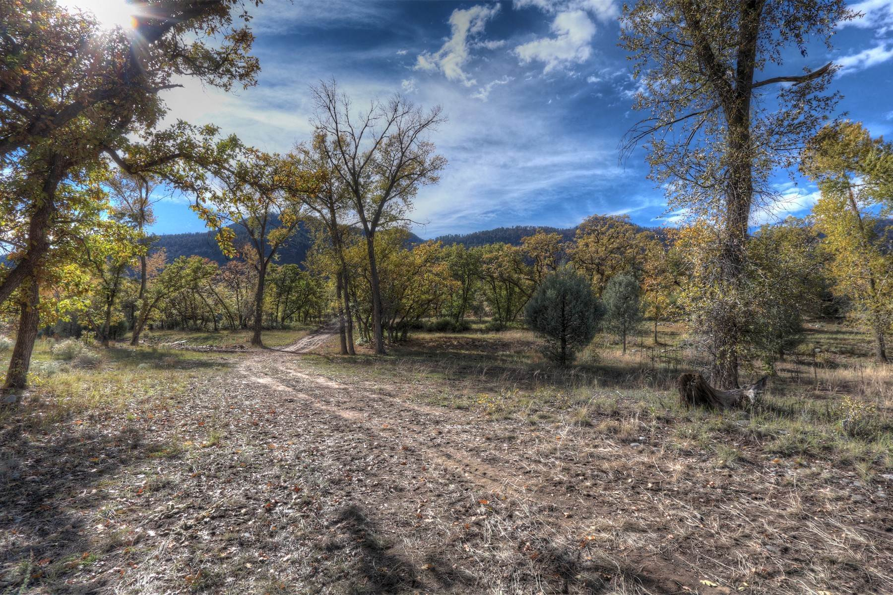 15. Land for Sale at Painter Ranch Lot 1 13950 CR 250 Durango, Colorado 81301 United States