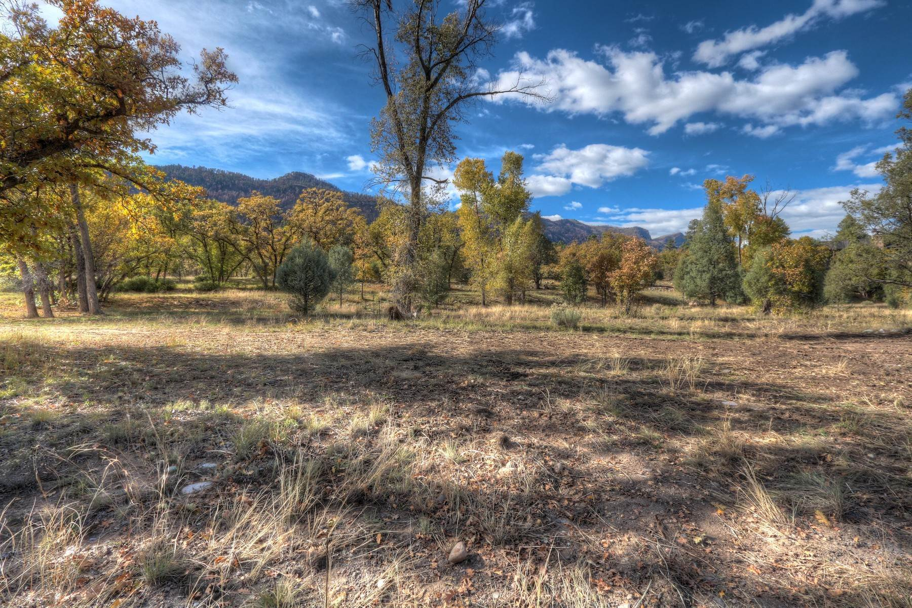16. Land for Sale at Painter Ranch Lot 1 13950 CR 250 Durango, Colorado 81301 United States