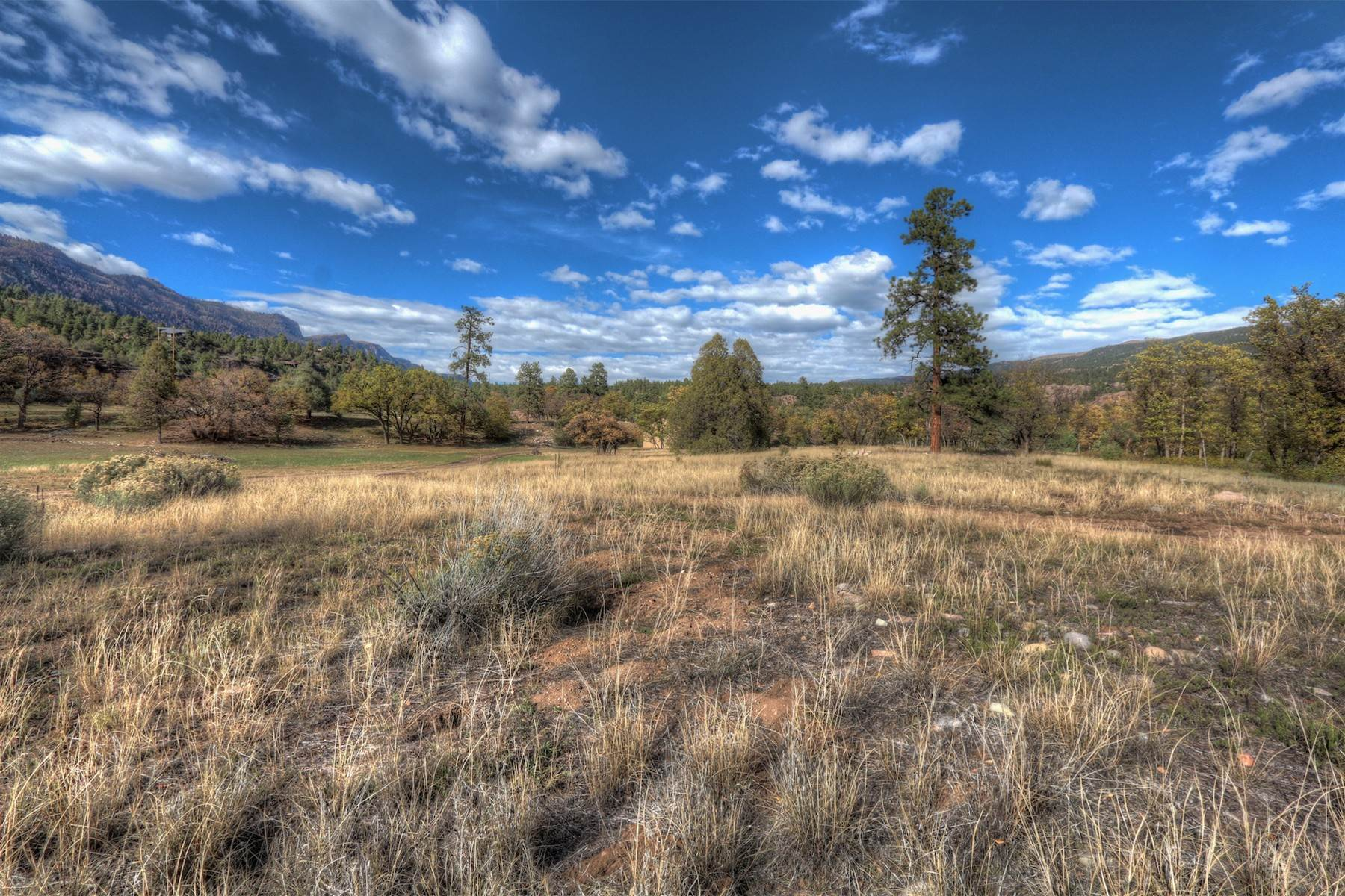 8. Land for Sale at Painter Ranch Lot 1 13950 CR 250 Durango, Colorado 81301 United States