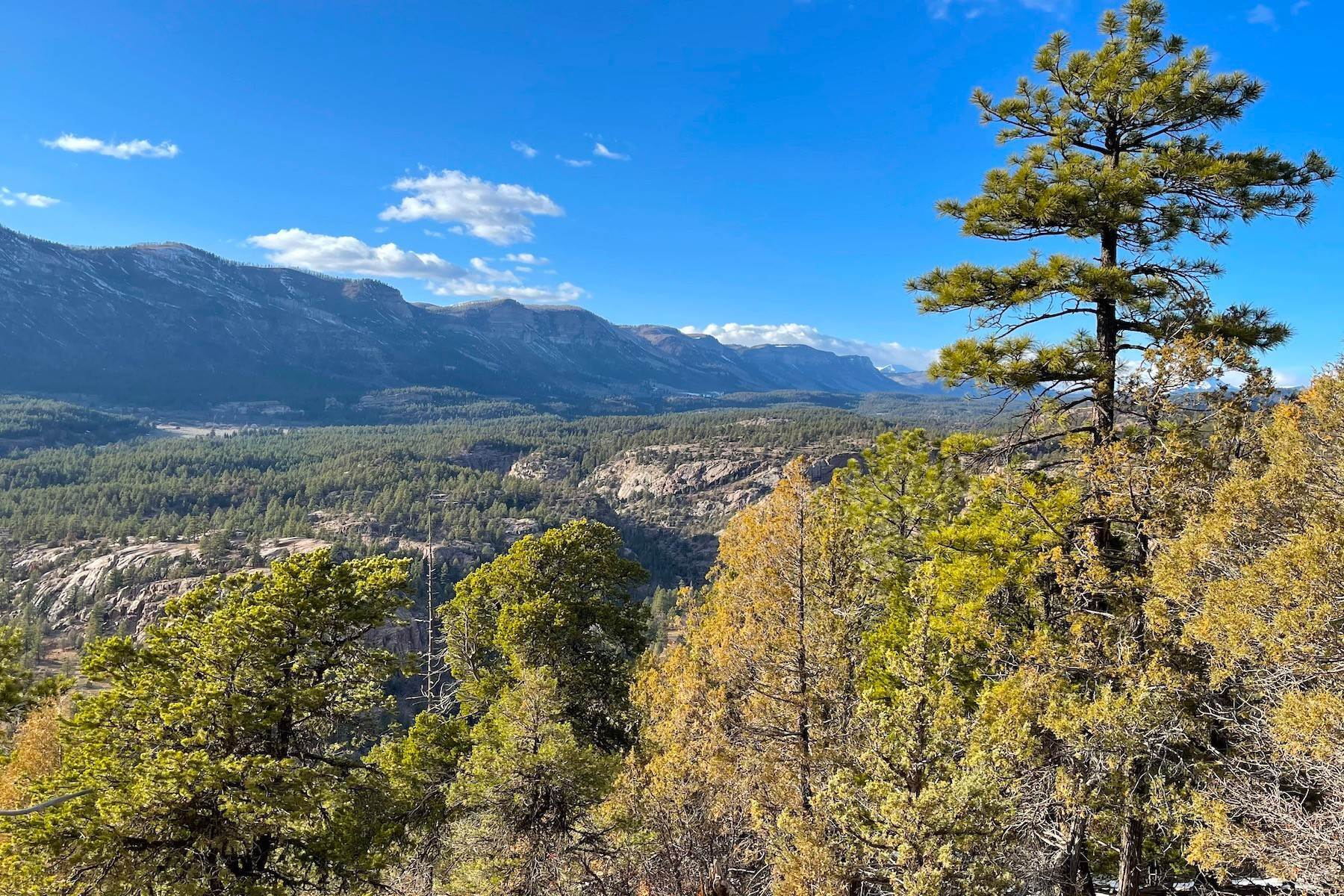 24. Land for Sale at 250 Becket Lake Drive Durango, Colorado 81301 United States