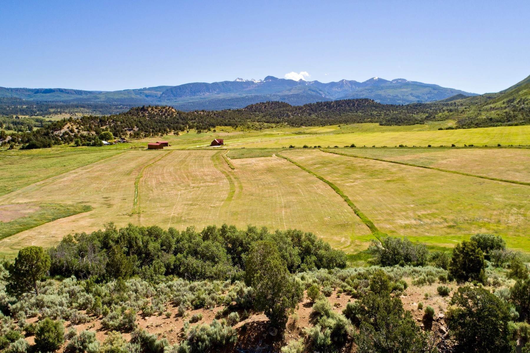 Land for Sale at TBD Hwy 160 & Road 42.5 Mancos, Colorado 81328 United States