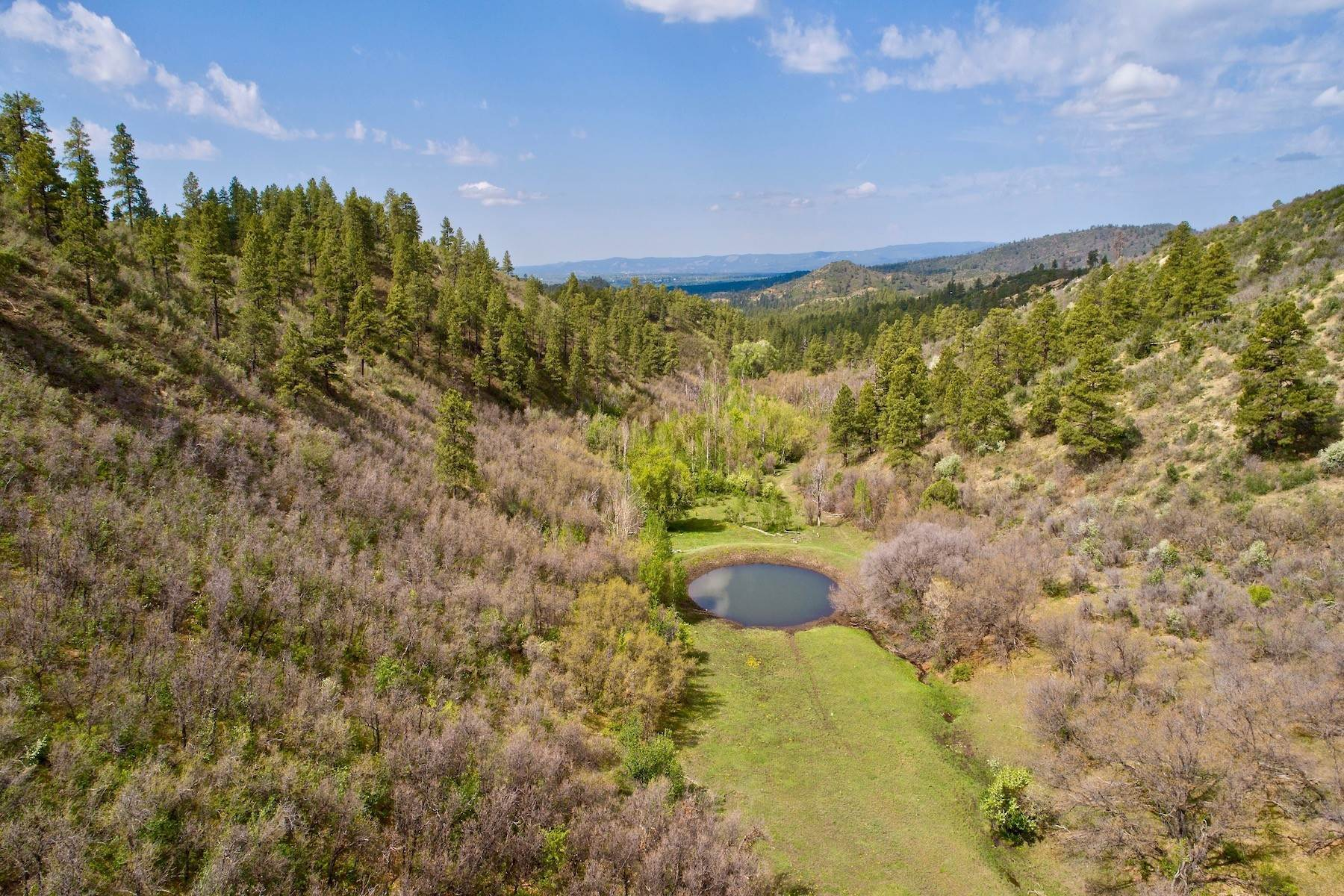 5. Farm and Ranch Properties for Sale at Elkhorn Ranch 7091 CR 228 Bayfield, Colorado 81122 United States