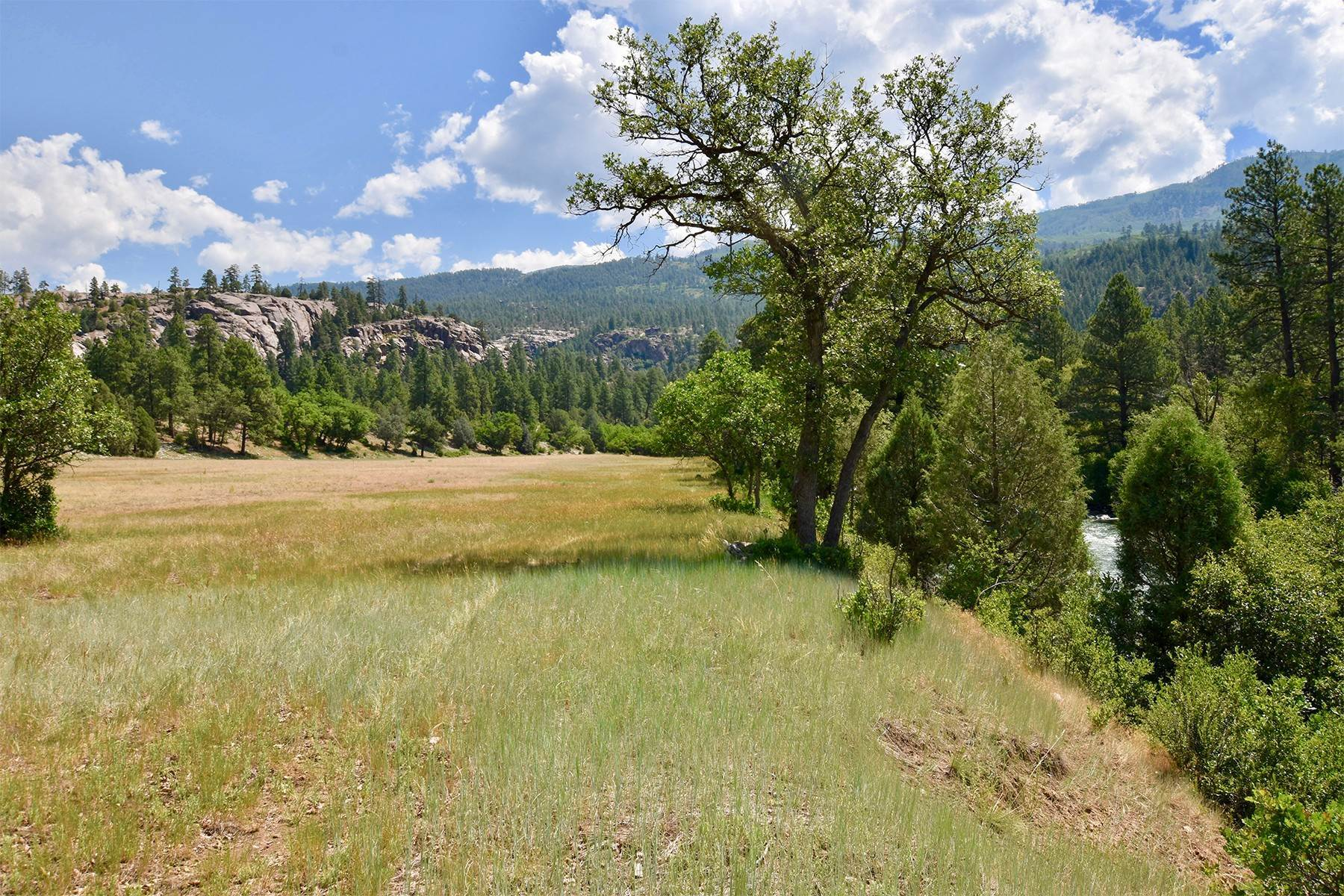 21. Land for Sale at 290 Painter Ranch Trail Durango, Colorado 81301 United States