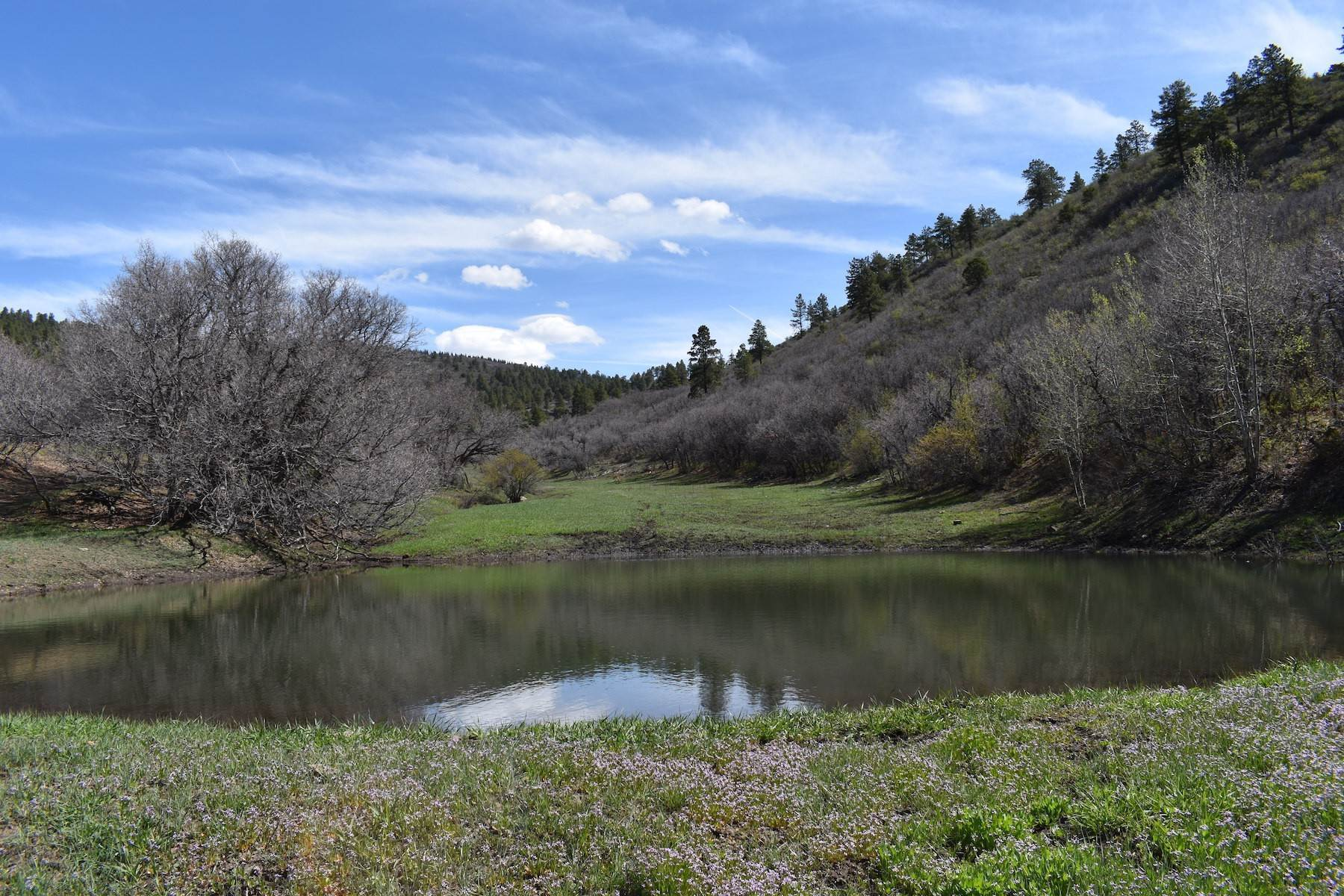 7. Farm and Ranch Properties for Sale at Elkhorn Ranch 7091 CR 228 Bayfield, Colorado 81122 United States