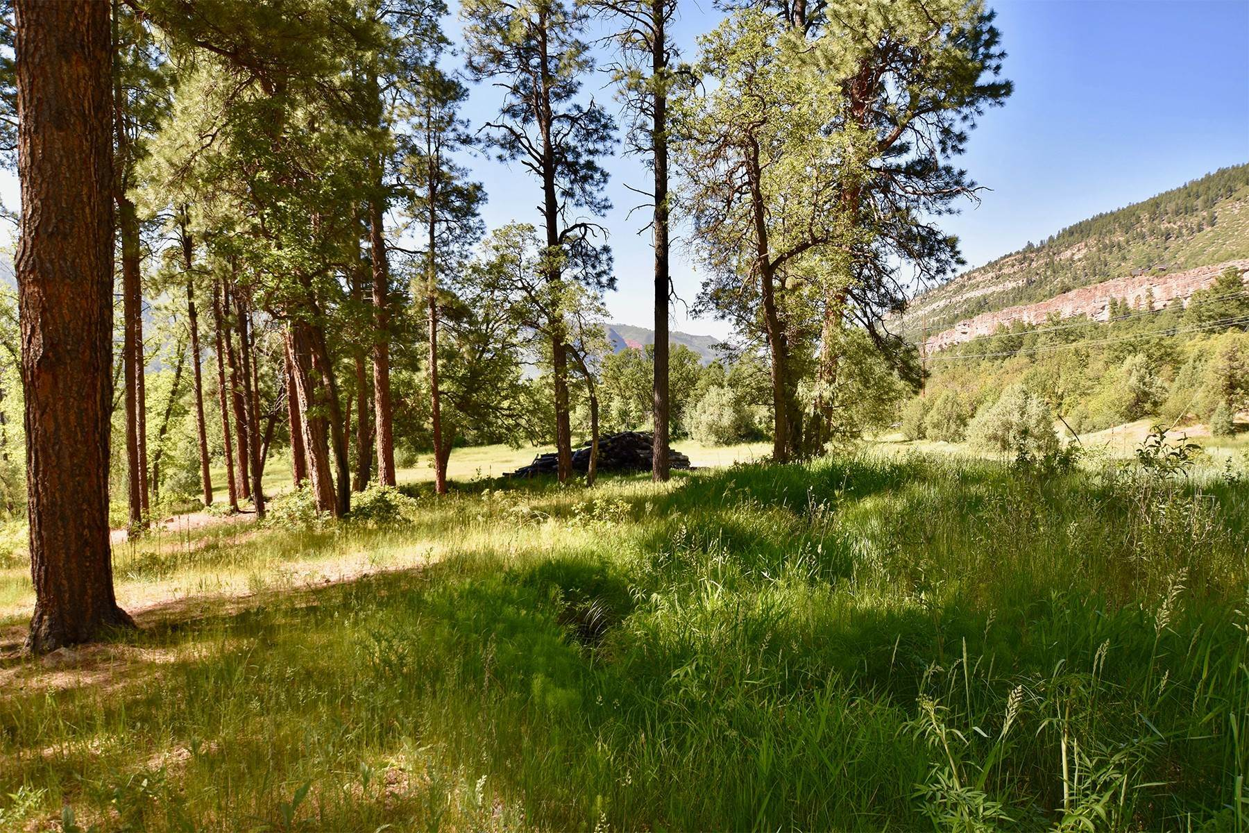 11. Land for Sale at 290 Painter Ranch Trail Durango, Colorado 81301 United States