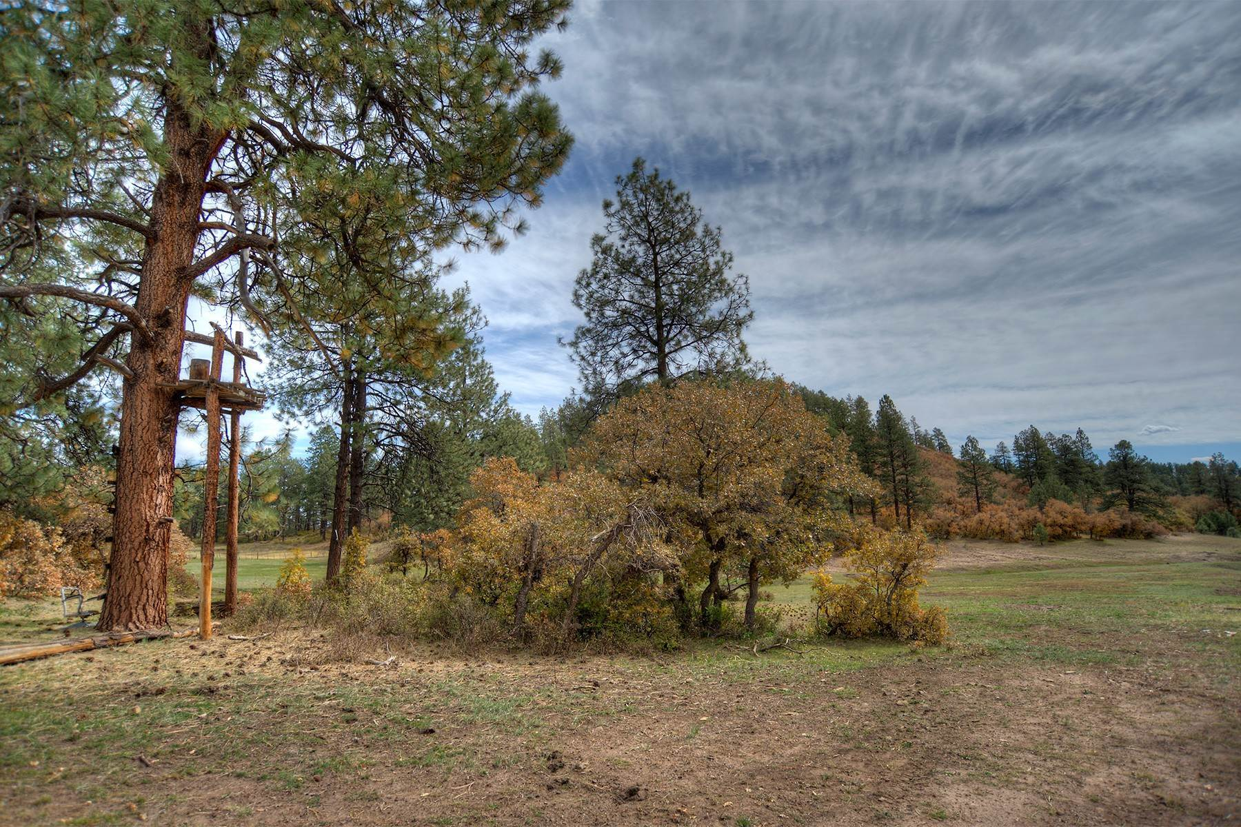 50. Farm and Ranch Properties for Sale at Elkhorn Ranch 7091 CR 228 Bayfield, Colorado 81122 United States