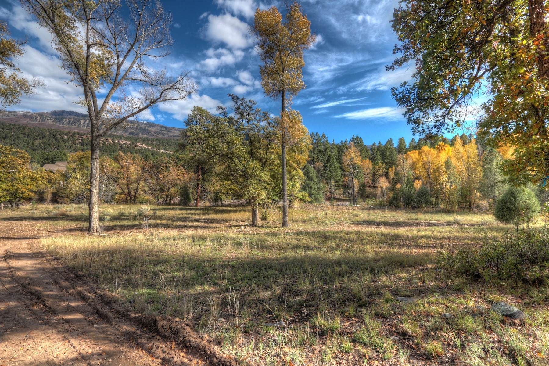 17. Land for Sale at Painter Ranch Lot 1 13950 CR 250 Durango, Colorado 81301 United States