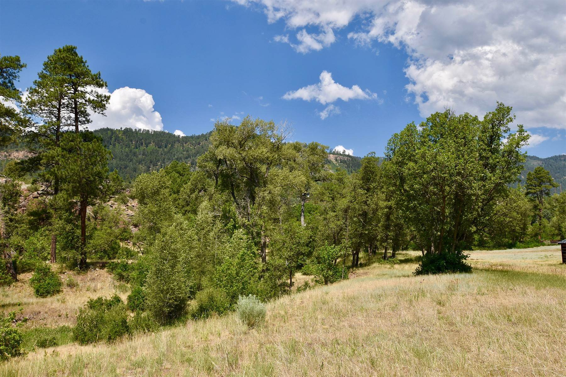 22. Land for Sale at 290 Painter Ranch Trail Durango, Colorado 81301 United States