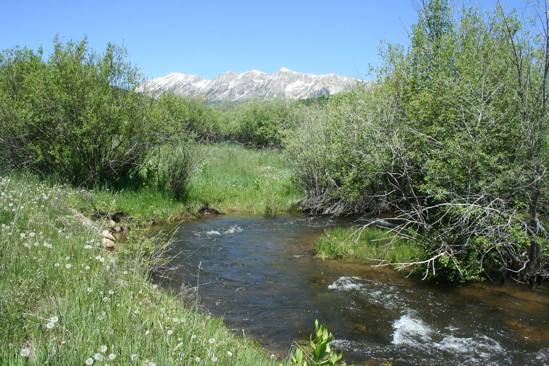 Land for Sale at Creekside Homesite 59 Chickasaw Trail Gunnison, Colorado 81230 United States