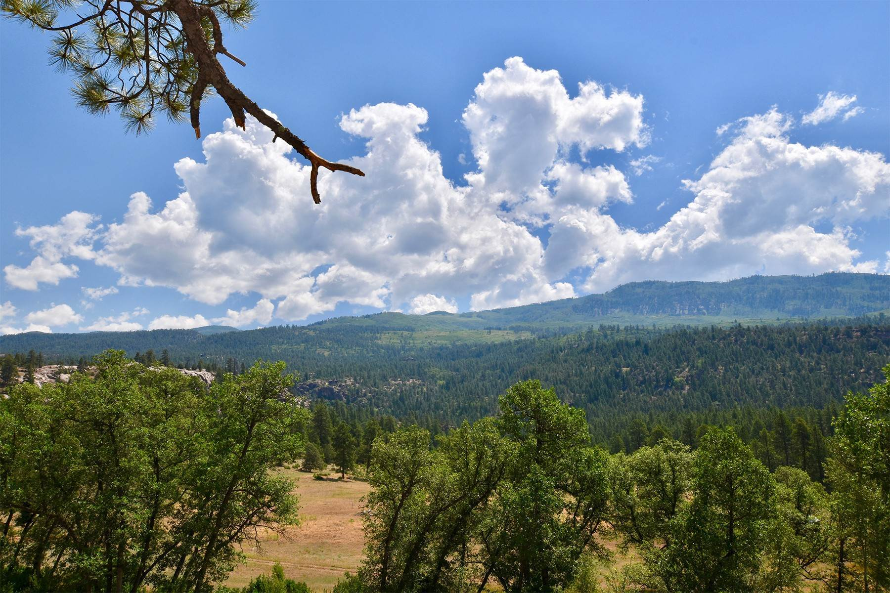 18. Land for Sale at 290 Painter Ranch Trail Durango, Colorado 81301 United States