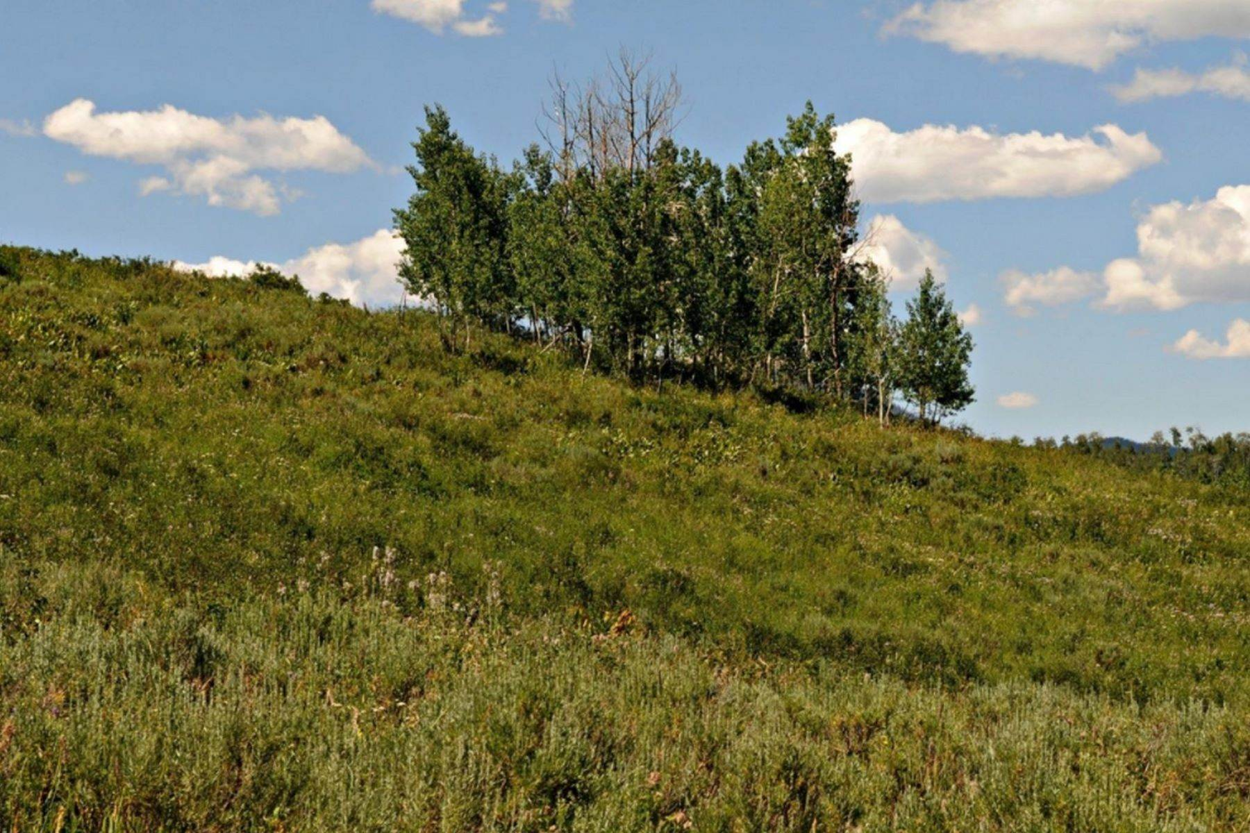 Land for Sale at Panoramic Acreage in Clark 57175 Green Bird Place Clark, Colorado 80428 United States