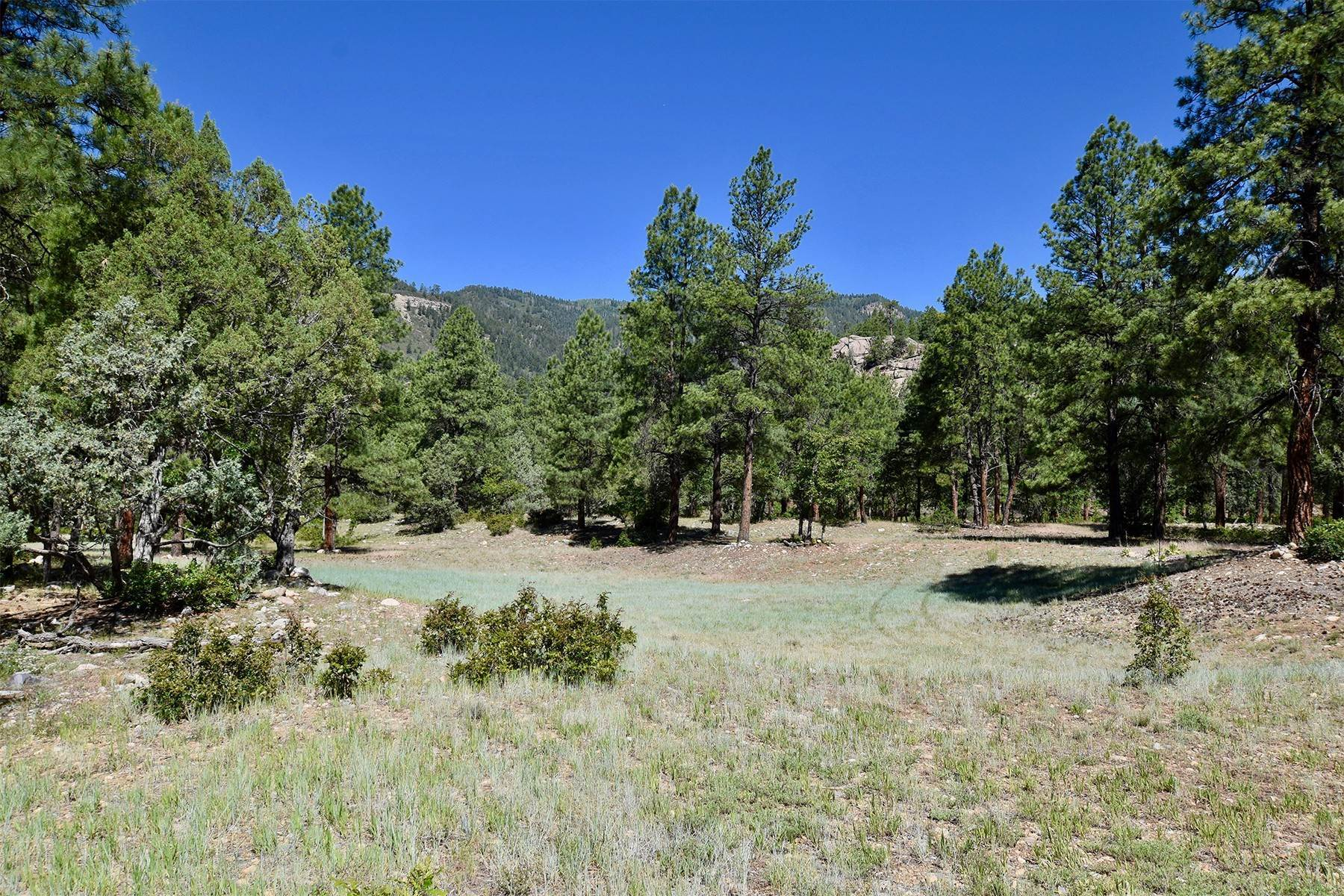 13. Land for Sale at 290 Painter Ranch Trail Durango, Colorado 81301 United States