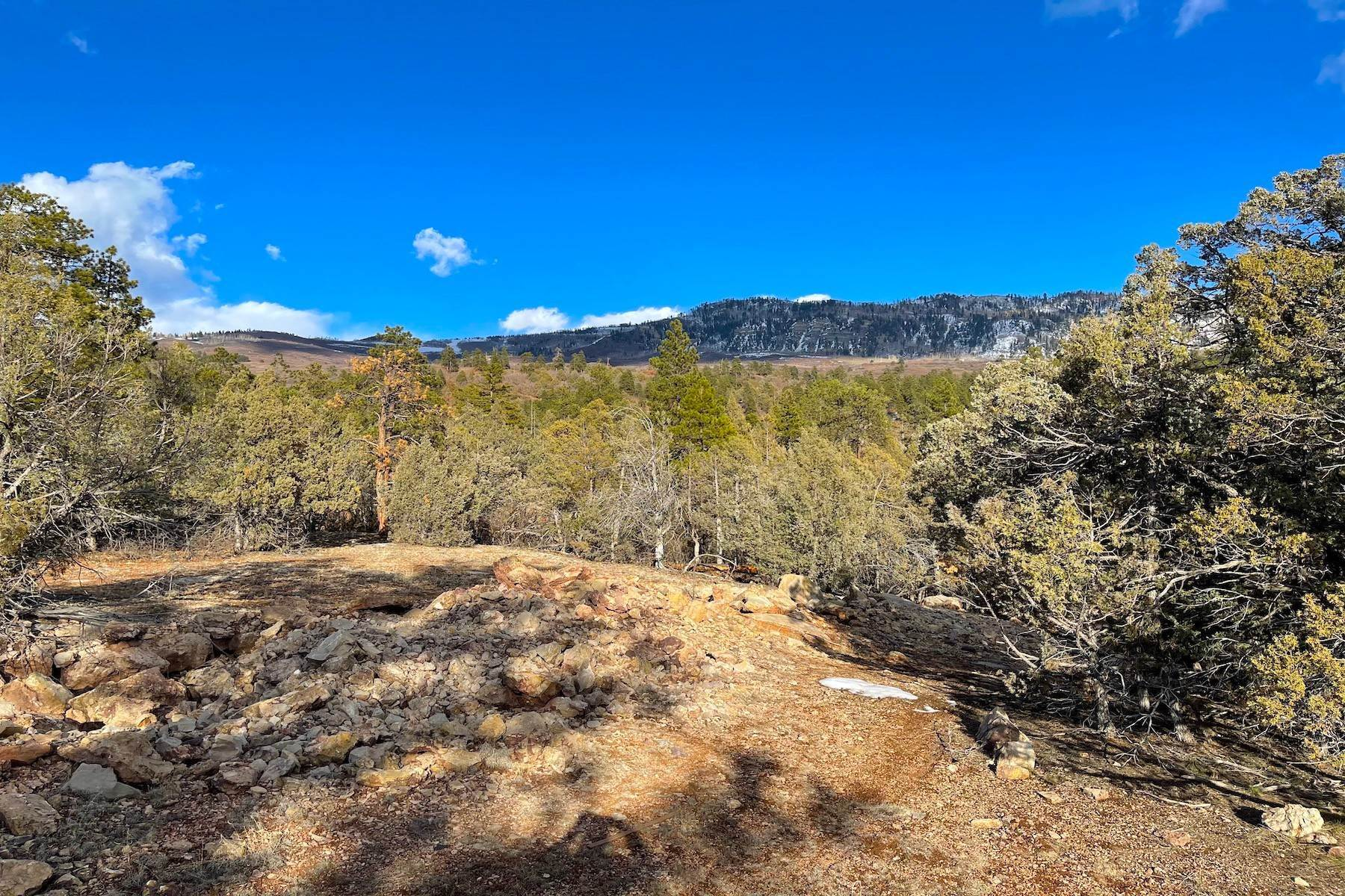 12. Land for Sale at 250 Becket Lake Drive Durango, Colorado 81301 United States
