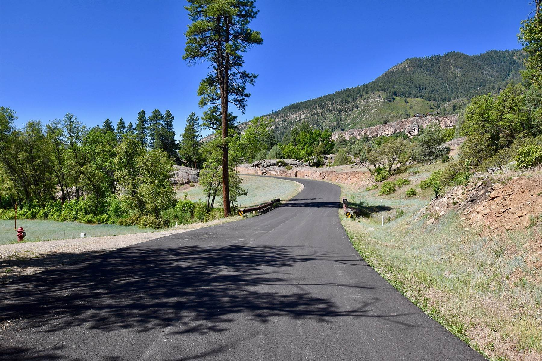 16. Land for Sale at 290 Painter Ranch Trail Durango, Colorado 81301 United States