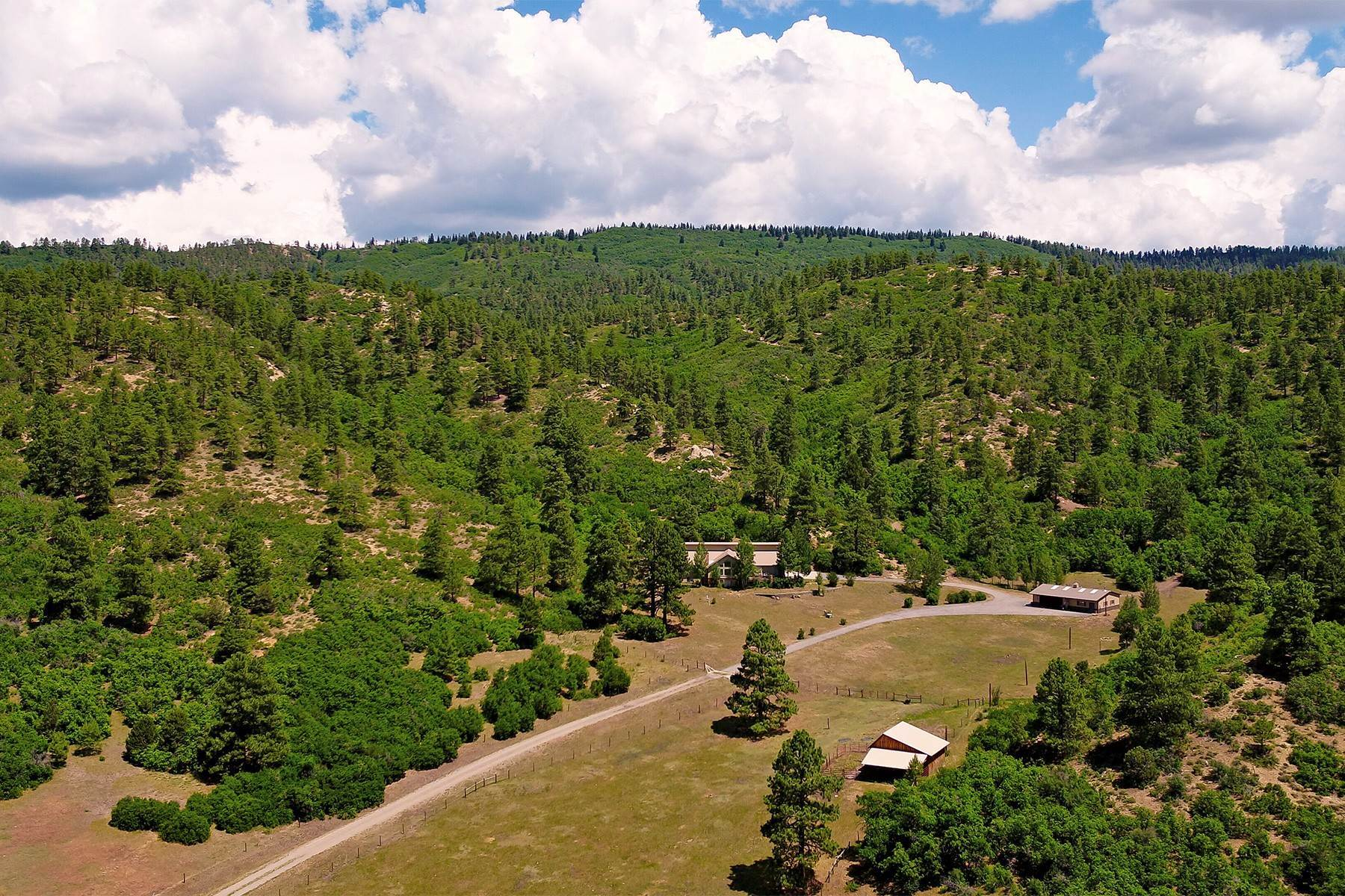 Farm and Ranch Properties for Sale at Elkhorn Ranch 7091 CR 228 Bayfield, Colorado 81122 United States