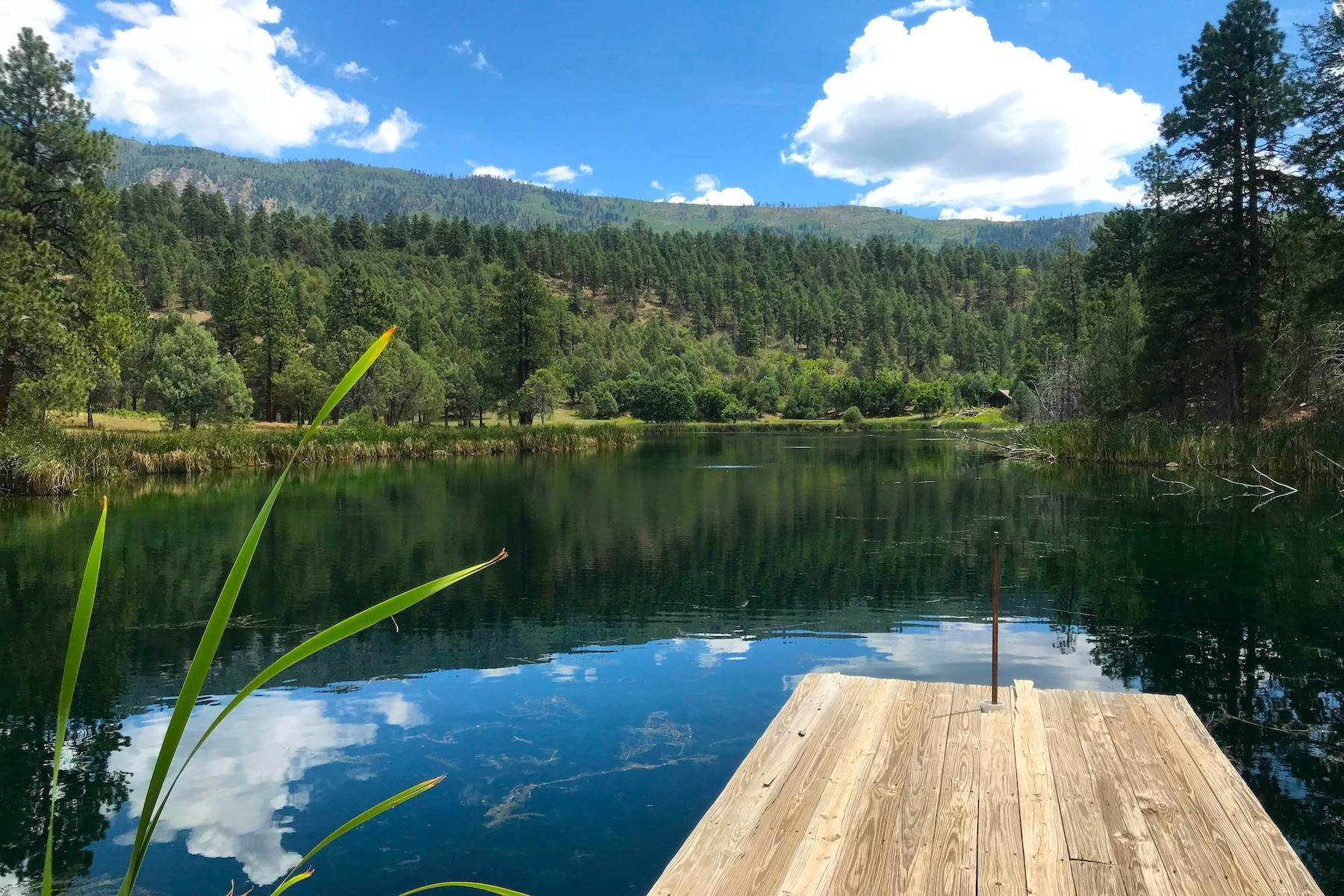Property for Sale at 250 Becket Lake Drive Durango, Colorado 81301 United States